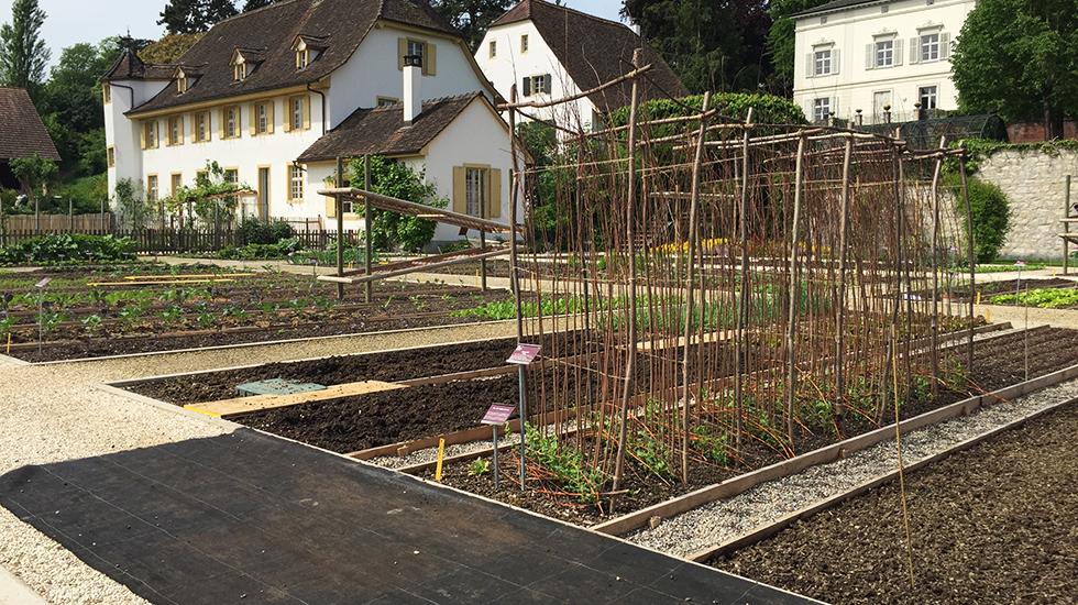 Klettergerüste Garten : Klettergerüste: einfach & dekorativ schweizer garten