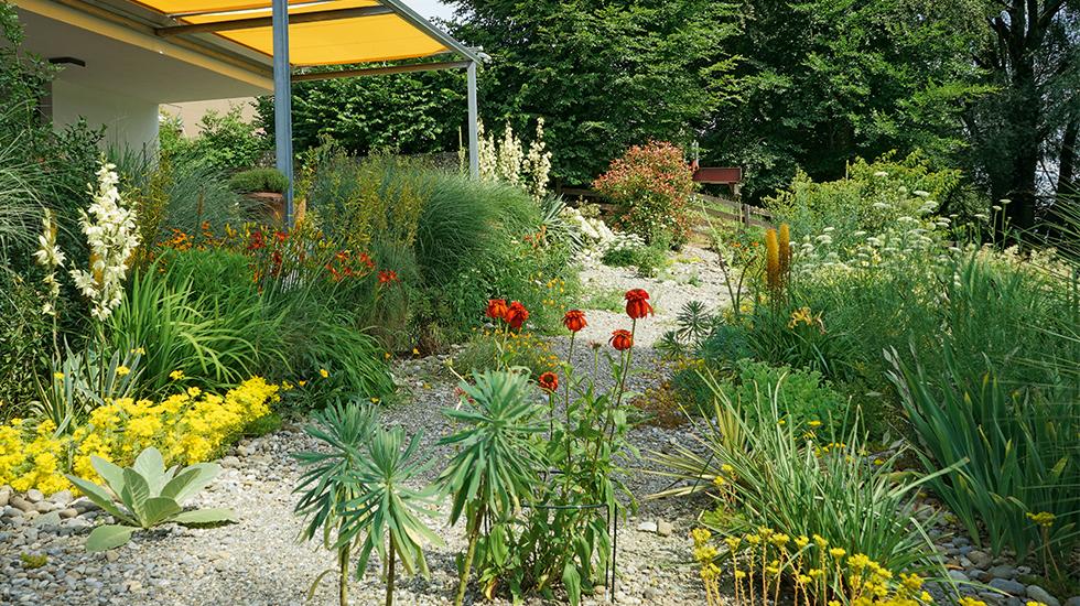 Reichtum Im Steingarten Schweizer Garten