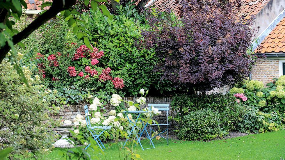 Startseite Schweizer Garten