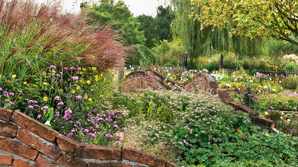 Kreative Gartenbilder Schweizer Garten
