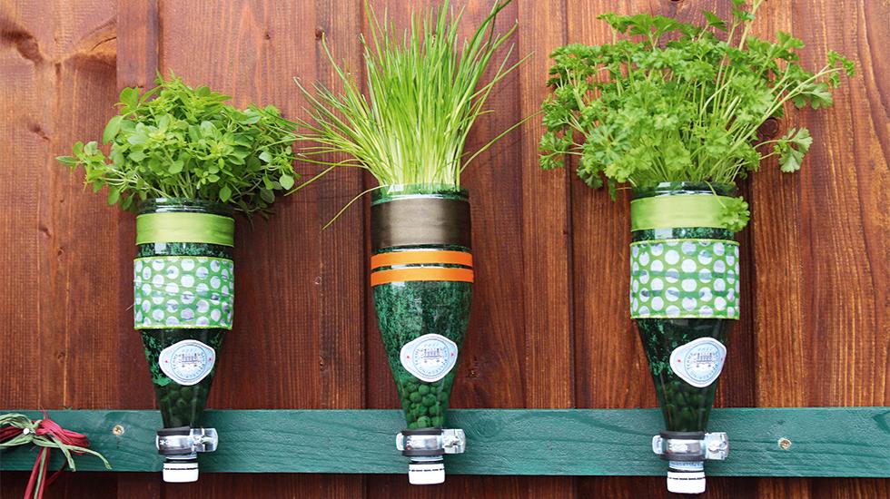 Selbstgemachter Flaschen Krautergarten Schweizer Garten