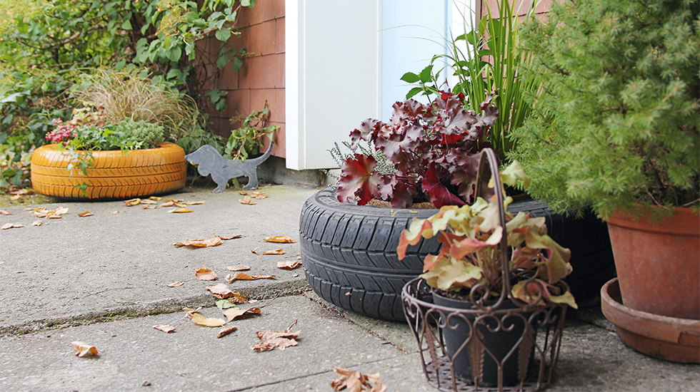 Herbstlich Bepflanzter Autoreifen Schweizer Garten