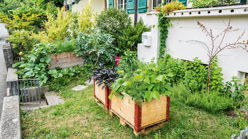 Frische Ideen für Vorgärten