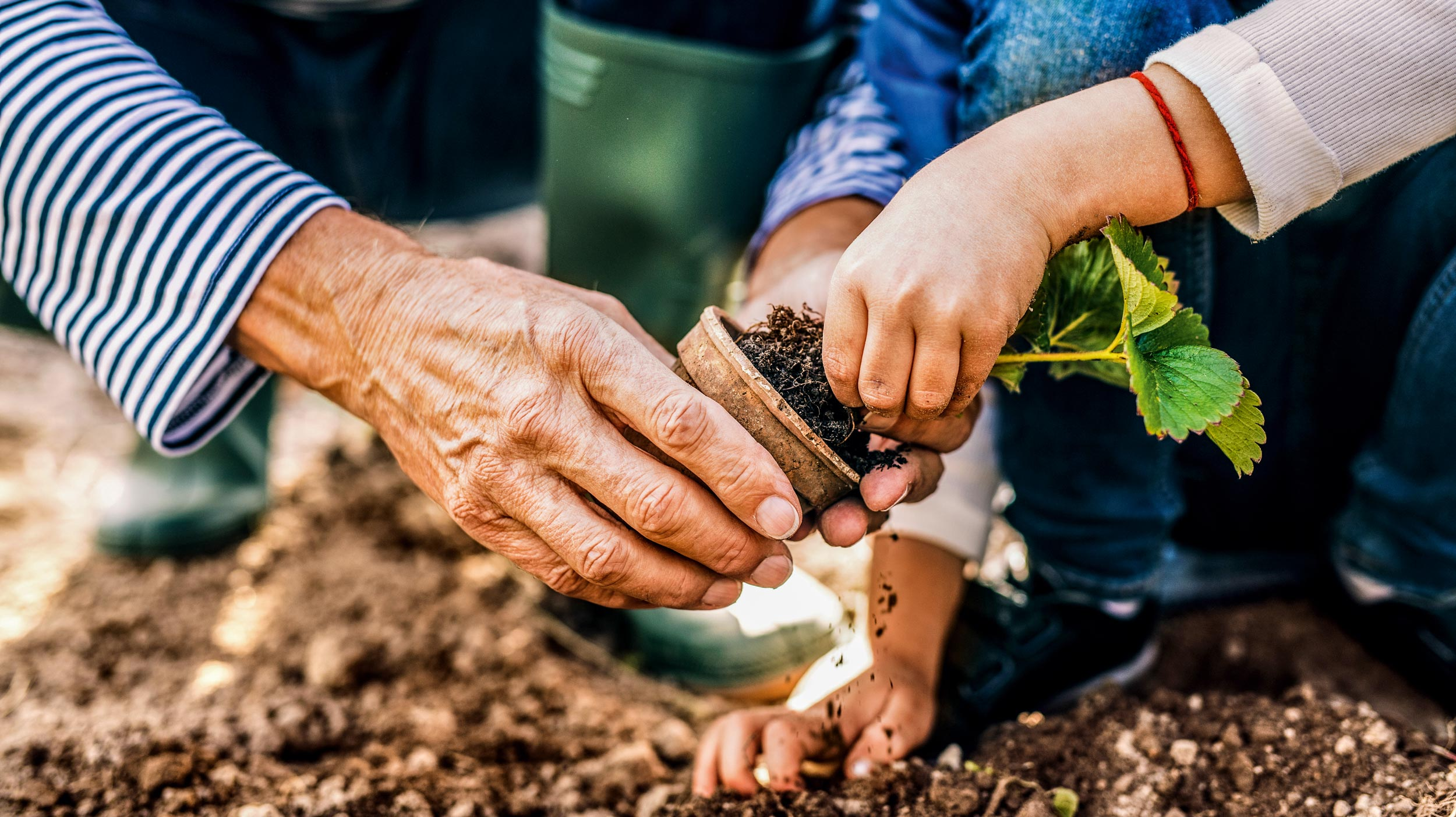 Ein Garten für Jung und Alt