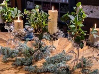 Weihnachtstisch mit Christrosen