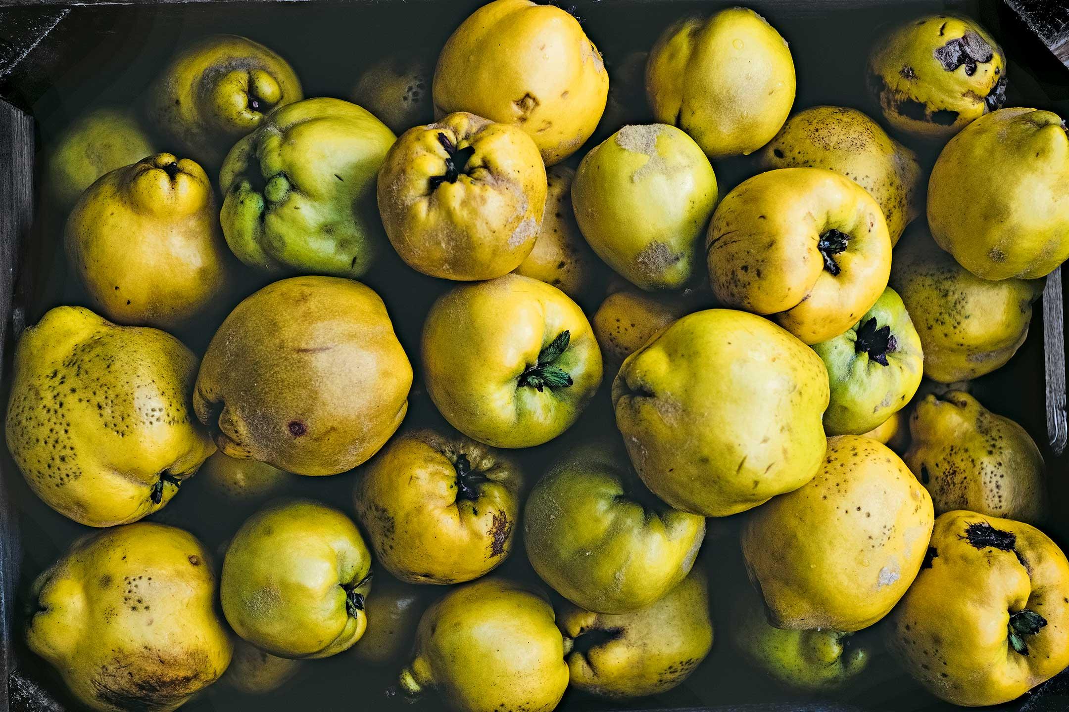 Quitten mit braunem Fruchtfleisch