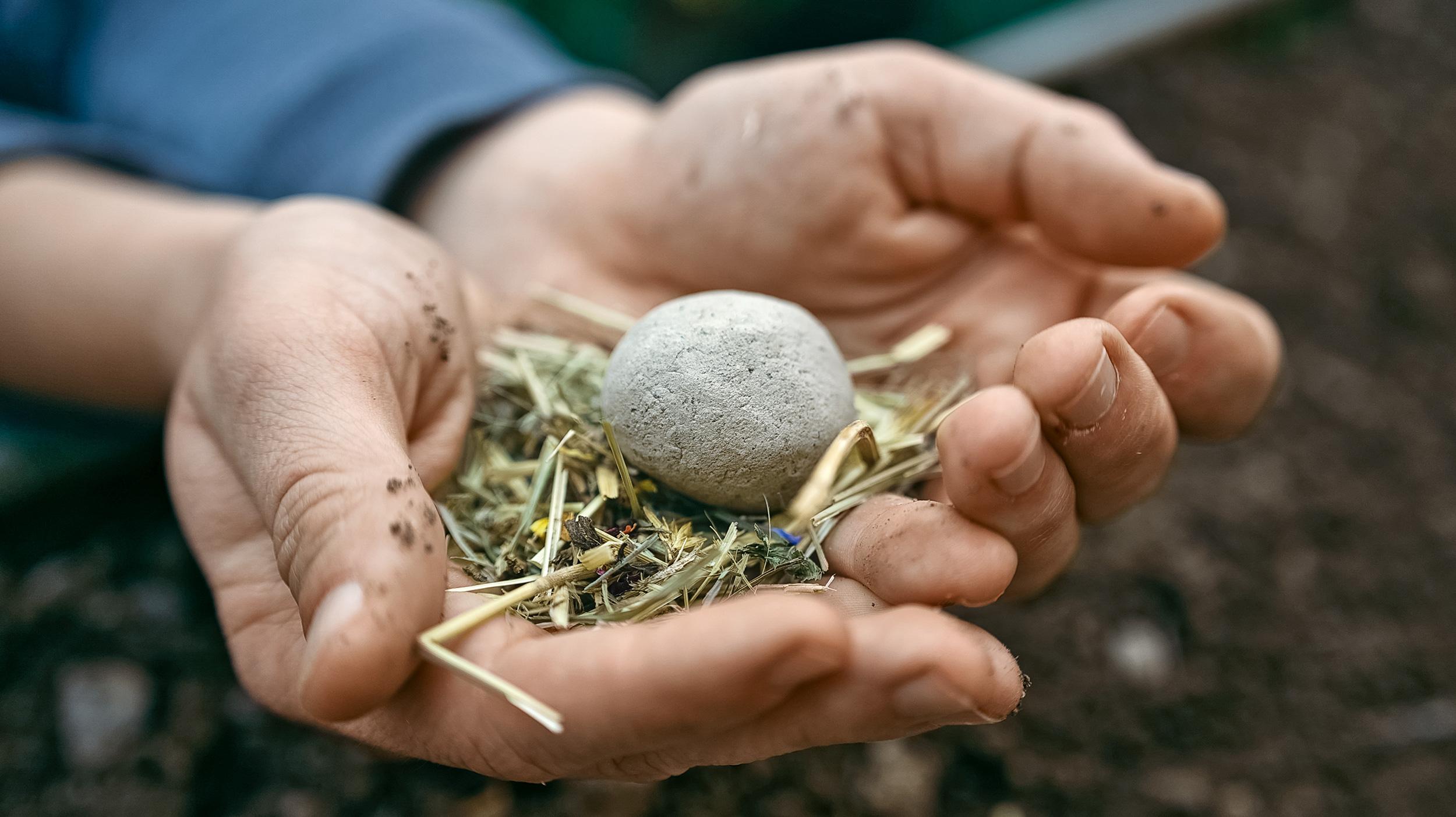 Samenbomben: Blumenwiesen zum Verschenken