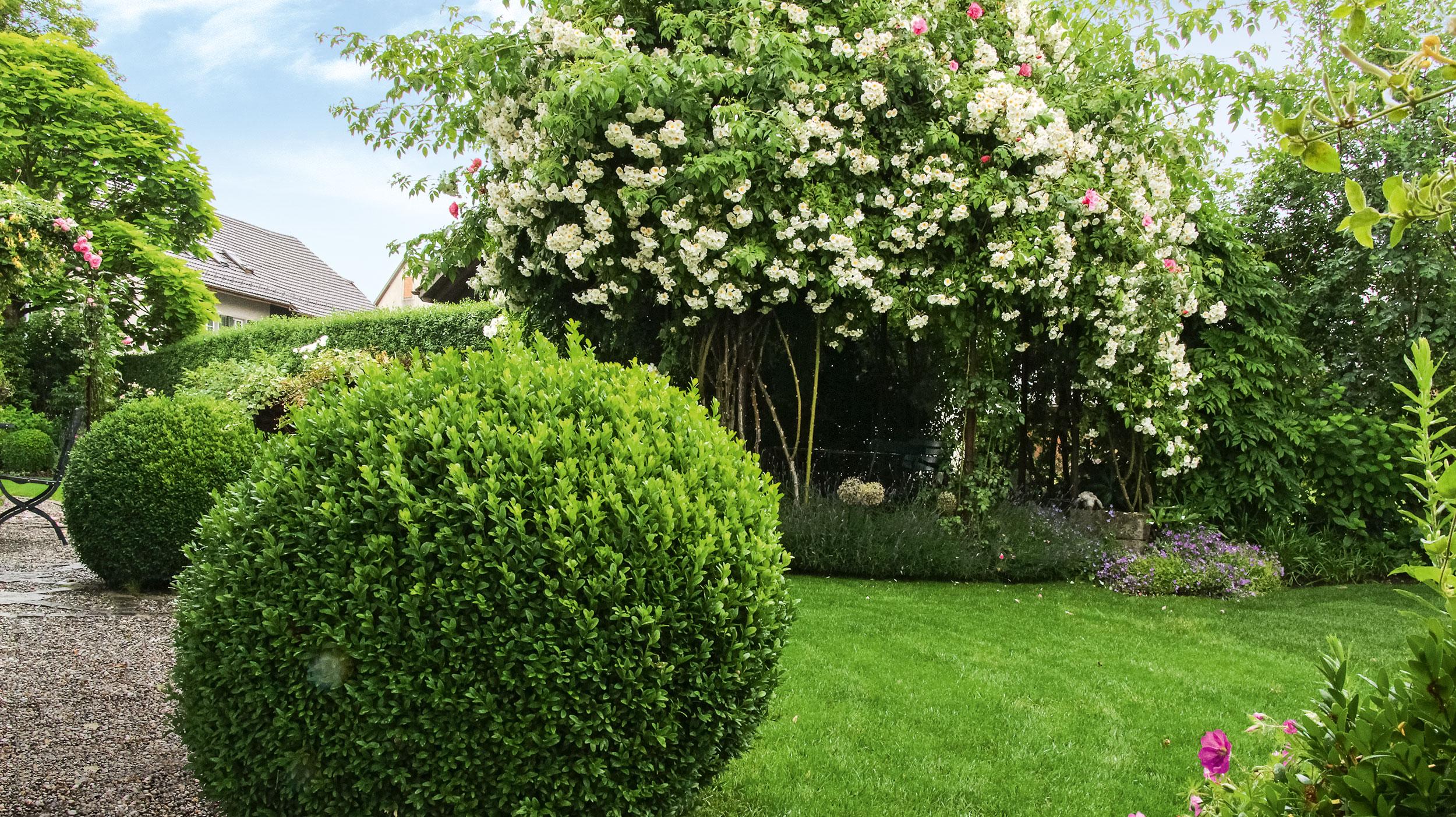 Liebeserklärung an England: Cottage-Garden anlegen